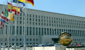 Le elezioni dei Comites e del CGIE rinviate al 2014
